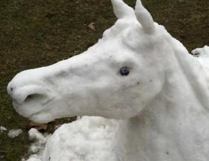snow_horse_3